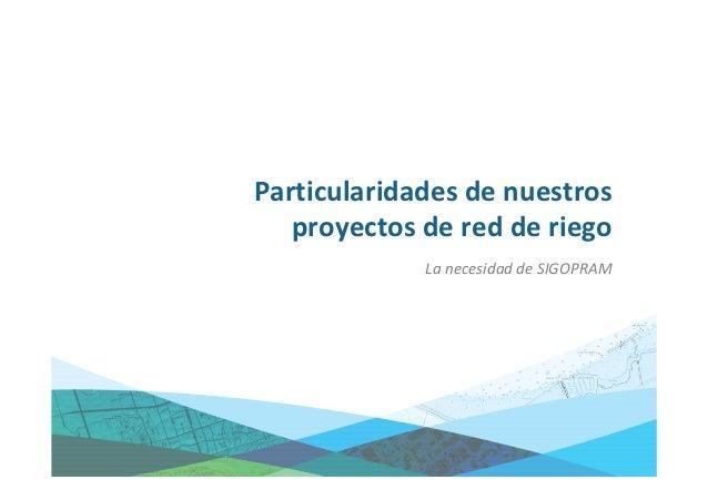 Particularidades de nuestros proyectos de red de riego•   Gran cantidad de información, gráfica y alfanumérica.•   Necesid...