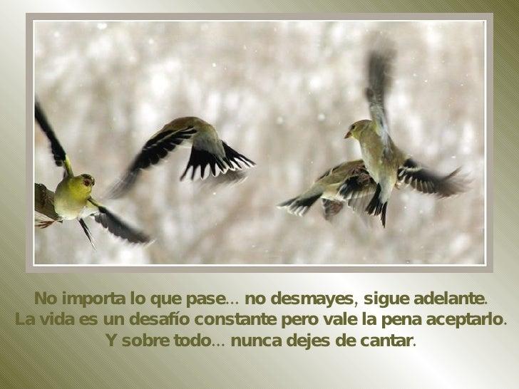 No importa lo que pase... no desmayes, sigue adelante. La vida es un desafío constante pero vale la pena aceptarlo. Y sobr...