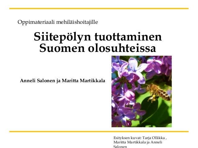 Siitepölyn tuottaminen Suomen olosuhteissa Oppimateriaali mehiläishoitajille Anneli Salonen ja Maritta Martikkala Esitykse...