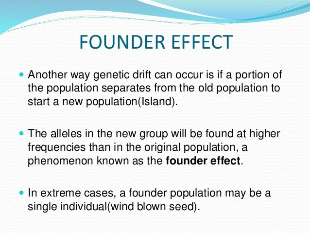 FOUNDER EFFECT  Another way genetic drift can occur is if a portion of the population separates from the old population t...