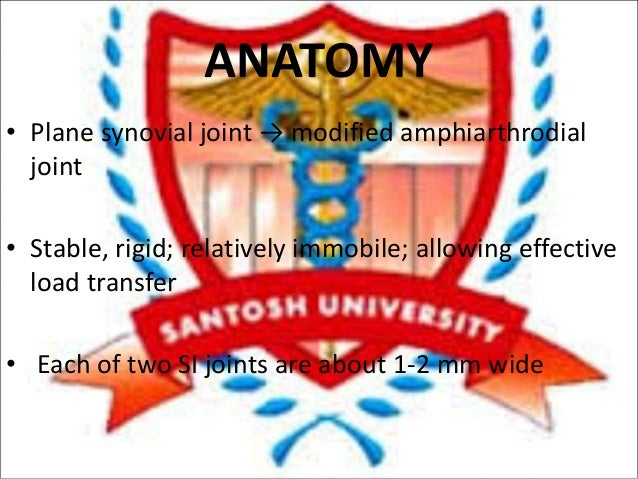 Si joint dysfunction Slide 3