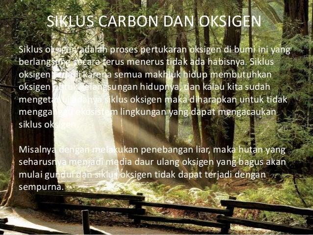 SIKLUS CARBON DAN OKSIGENSiklus oksigen adalah proses pertukaran oksigen di bumi ini yangberlangsung secara terus menerus ...