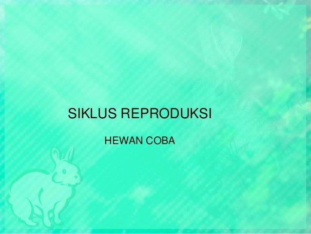 SIKLUS REPRODUKSI HEWAN COBA
