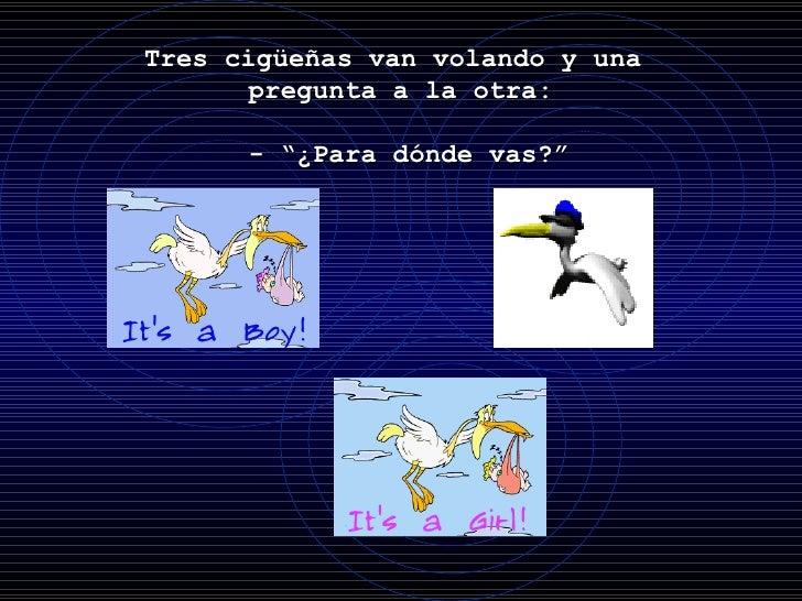 """Tres cigüeñas van volando y una  pregunta a la otra:  - """"¿Para dónde vas?"""""""
