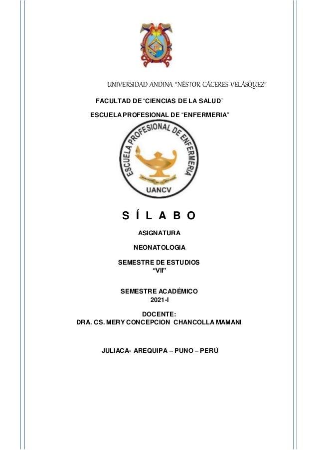 silabo neonatologia 1 638