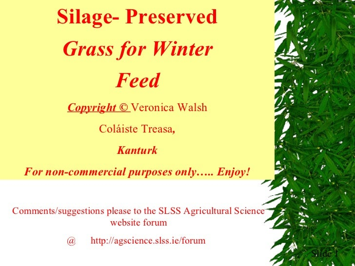 Slide  Silage- Preserved Grass for Winter Feed Copyright ©  Veronica Walsh Coláiste Treasa , Kanturk F or non-commercial p...