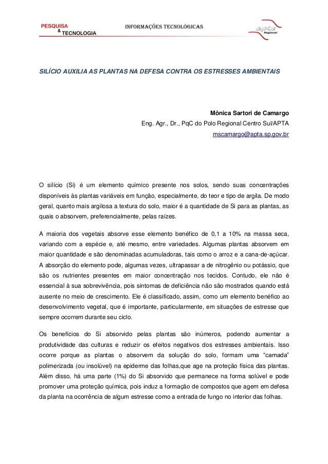 SILÍCIO AUXILIA AS PLANTAS NA DEFESA CONTRA OS ESTRESSES AMBIENTAIS Mônica Sartori de Camargo Eng. Agr., Dr., PqC do Polo ...