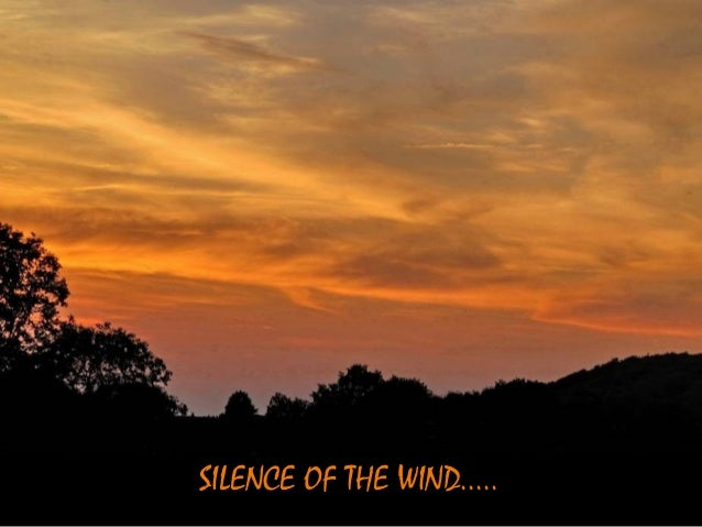 SILENCE OF THE WIND.....