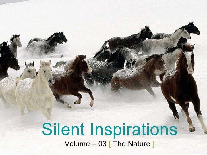 Silent Inspirations Volume – 03  [  The Nature  ]