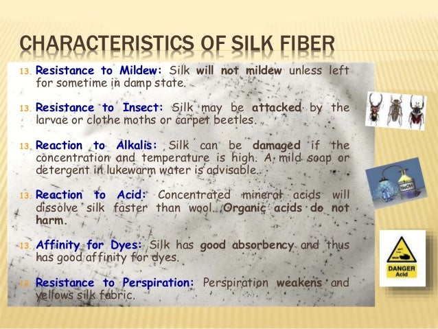 Natural Animal Fiber Silk