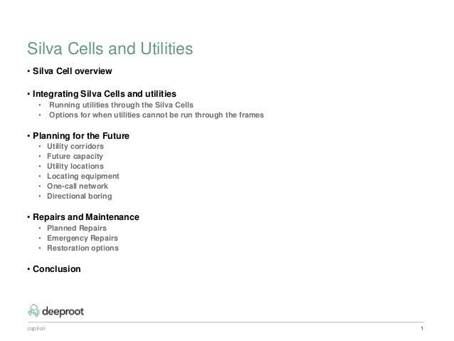 Integrating Silva Cells and Utilities Slide 2