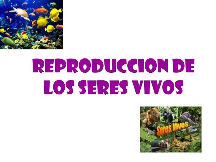 REPRODUCCION DE LOS SERES VIVOS