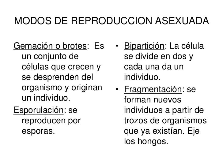 MODOS DE REPRODUCCION            SEXUADA• Son los gametos y la  fecundación.• Se le llama  espermatozoide al  gameto mascu...