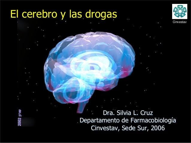 El cerebro y las drogas                                           Cinvestav                     Dra. Silvia L. Cruz       ...
