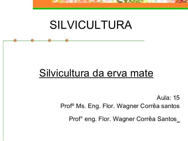 SILVICULTURA  Silvicultura da erva mate  Aula: 15  Profº Ms. Eng. Flor. Wagner Corrêa santos  Prof° eng. Flor. Wagner Corr...