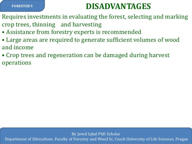 advantages and disadvantages of forests The oregon forest resources institute lists minimizing forest floor and soil disturbance, greater efficiency and economy for timber harvesting, and providing full-sun conditions for certain types of species as the advantages of clear cutting the disadvantages of clear cutting are numerous and.