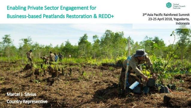 Enabling Private Sector Engagement for Business-based Peatlands Restoration & REDD+ Marcel J. Silvius Country Representive...