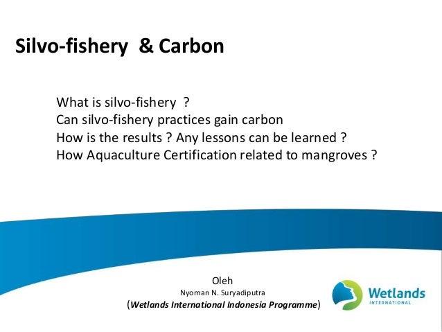 Silvo-fishery & Carbon Oleh Nyoman N. Suryadiputra (Wetlands International Indonesia Programme) What is silvo-fishery ? Ca...
