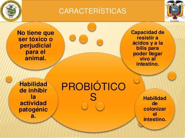 Prebi ticos y probi ticos en la alimentacion animal - Alimentos con probioticos y prebioticos ...