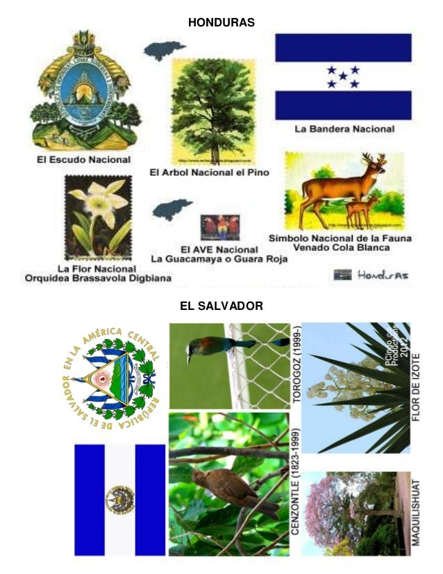 HONDURAS EL SALVADOR