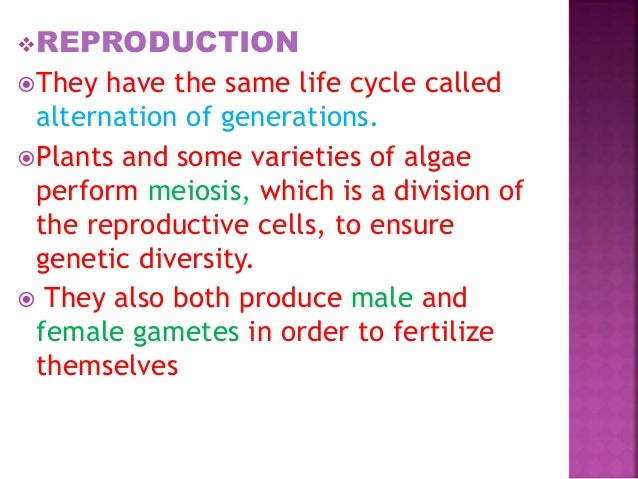 Asexual reproduction in plants quizlet login