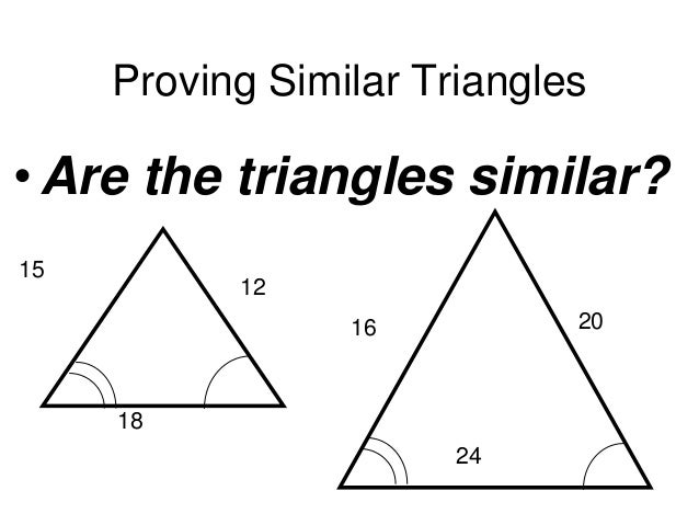 Similar triangles day2