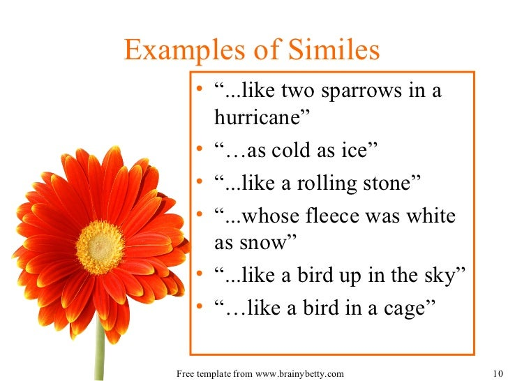 Introduction To Similes And Metaphors