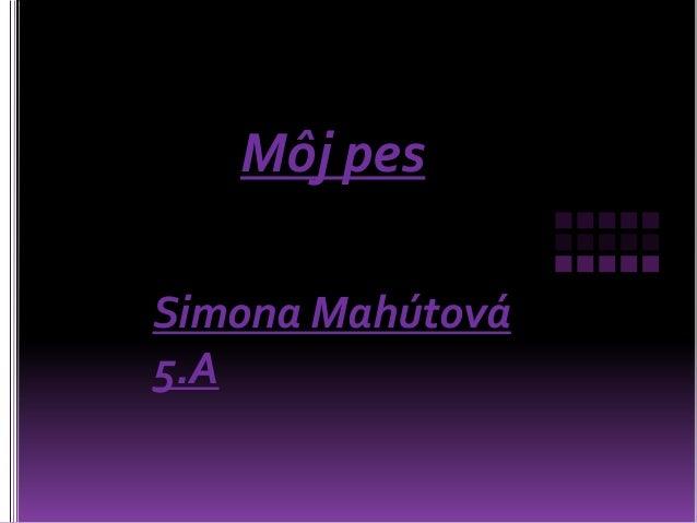 Môj pesSimona Mahútová5.A