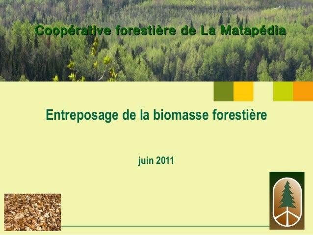 Coopérative forestière de La MatapédiaCoopérative forestière de La Matapédia Entreposage de la biomasse forestière juin 20...