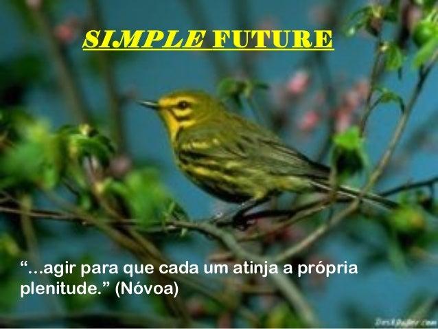 """SIMPLE FUTURE""""...agir para que cada um atinja a própriaplenitude."""" (Nóvoa)"""