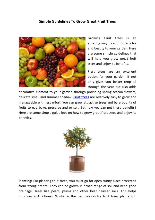 Simple Guidelines To Grow Great Fruit Trees                                             Growing Fruit trees is an         ...