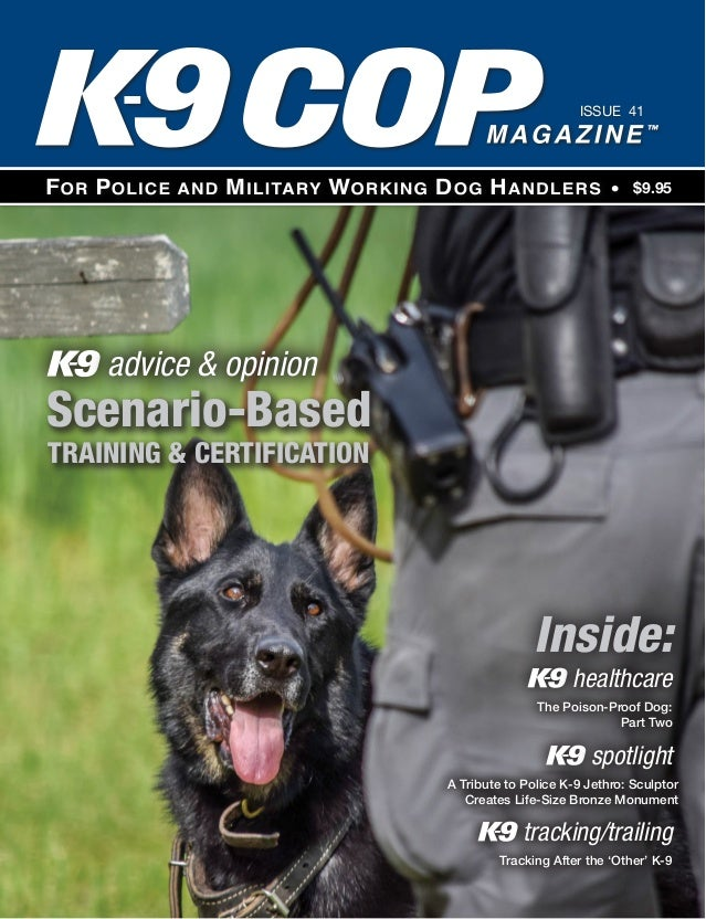 Lure Reward Dog Training