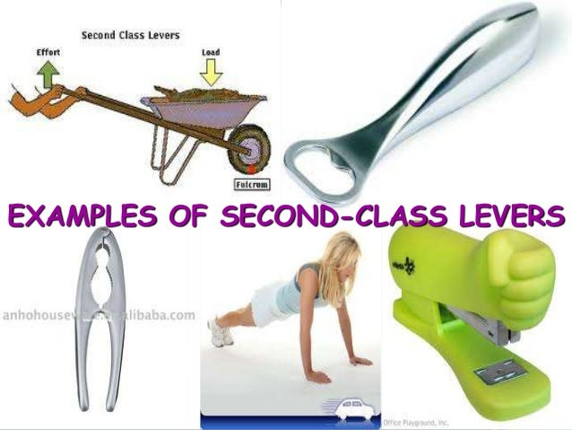 Class three lever examples.