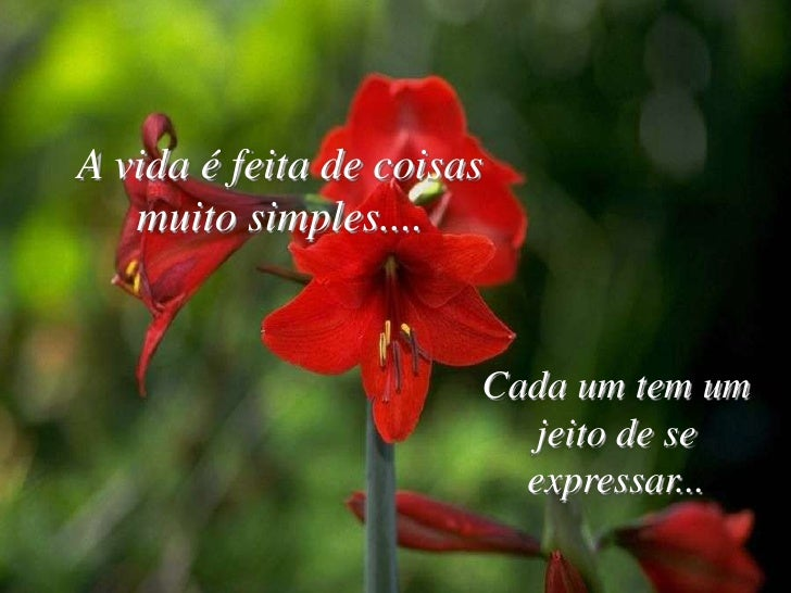 A vida é feita de coisas    muito simples....                          Cada um tem um                          jeito de se...