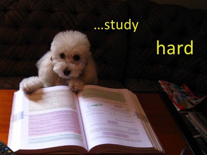 … study   hard