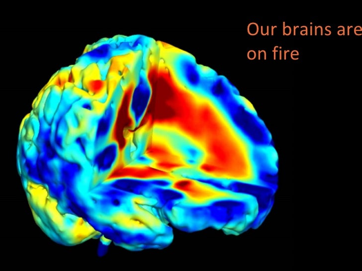 Our brains are on fire
