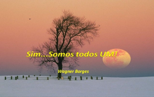Wagner Borges