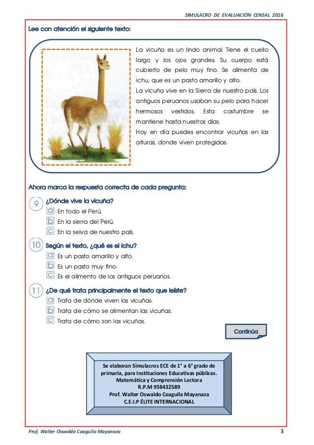 SIMULACRO DE EVALUACIÓN CENSAL 2016 Prof. Walter Oswaldo Coaguila Mayanaza 3 Lee con atención el siguiente texto: La vicuñ...