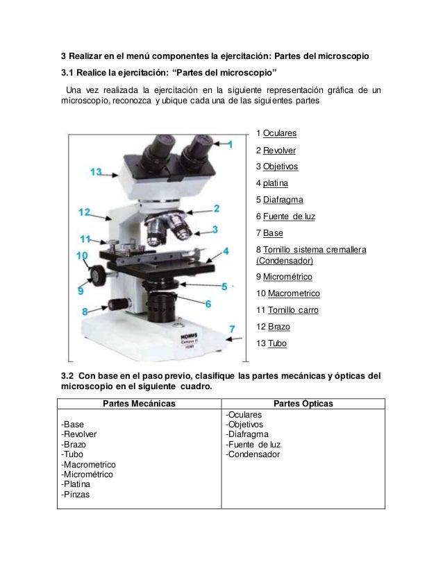 Simulador de microscopia trabajo final (1)
