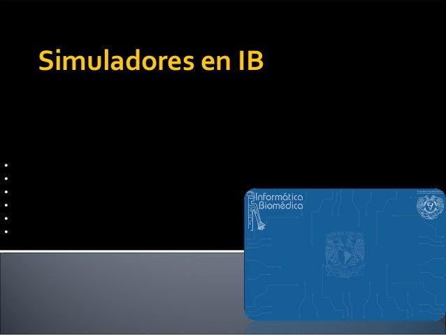 Simuladores en IBEquipo Lindberg :•Alva Cortez Fernanda•De la Rosa Pérez Adolfo•Elizalde Arroyo Víctor Manuel•Mendoza Gonz...