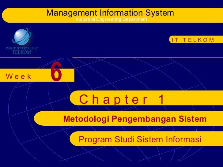 Management Information System             Industrial Engineering Department                                               ...