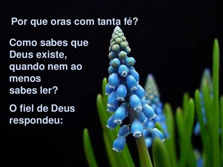 Por que oras com tanta fé?Como sabes queDeus existe,quando nem aomenossabes ler?O fiel de Deusrespondeu: