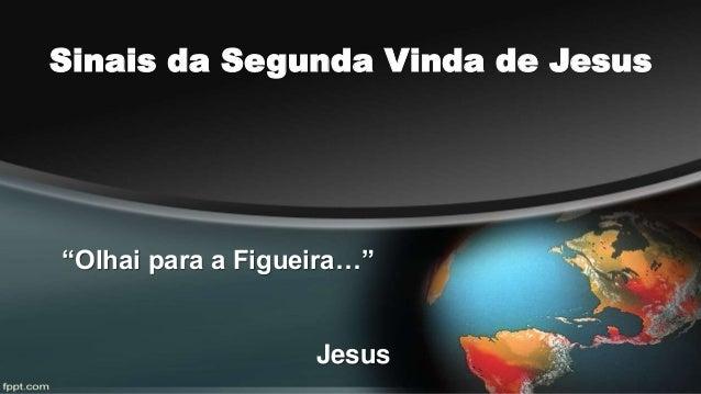 """Sinais da Segunda Vinda de Jesus  """"Olhai para a Figueira…""""  Jesus"""