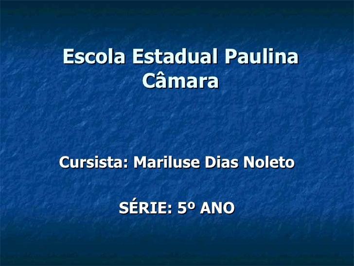 Escola Estadual Paulina Câmara Cursista: Mariluse Dias Noleto SÉRIE: 5º ANO