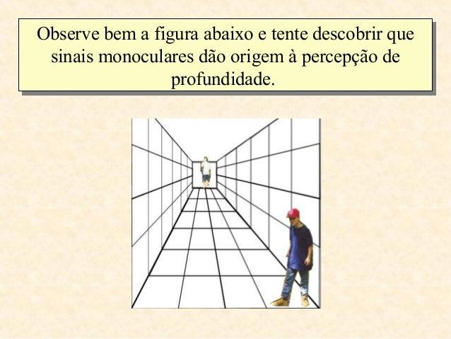Observe bem a figura abaixo e tente descobrir queObserve bem a figura abaixo e tente descobrir que sinais monoculares dão ...