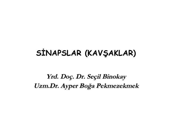 SİNAPSLAR (KAVŞAKLAR) Yrd. Doç. Dr. Seçil Binokay Uzm.Dr. Ayper Boğa Pekmezekmek