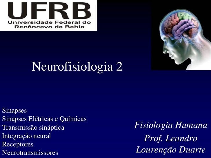 Neurofisiologia 2SinapsesSinapses Elétricas e QuímicasTransmissão sináptica           Fisiologia HumanaIntegração neural  ...