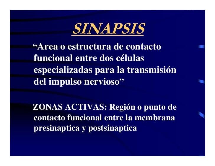 """SINAPSIS """"Area o estructura de contacto funcional entre dos células especializadas para la transmisión del impulso nervios..."""