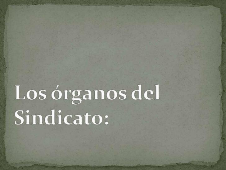 Los órganos del Sindicato:<br />