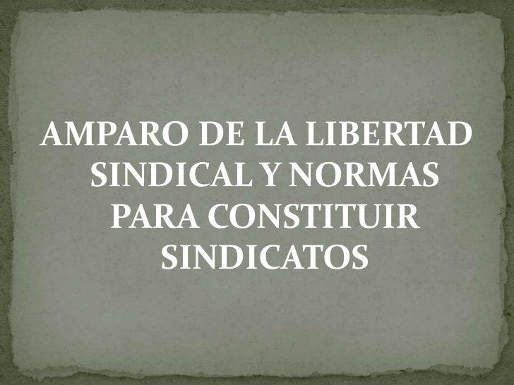AMPARO DE LA LIBERTAD SINDICAL Y NORMAS PARA CONSTITUIR SINDICATOS<br />